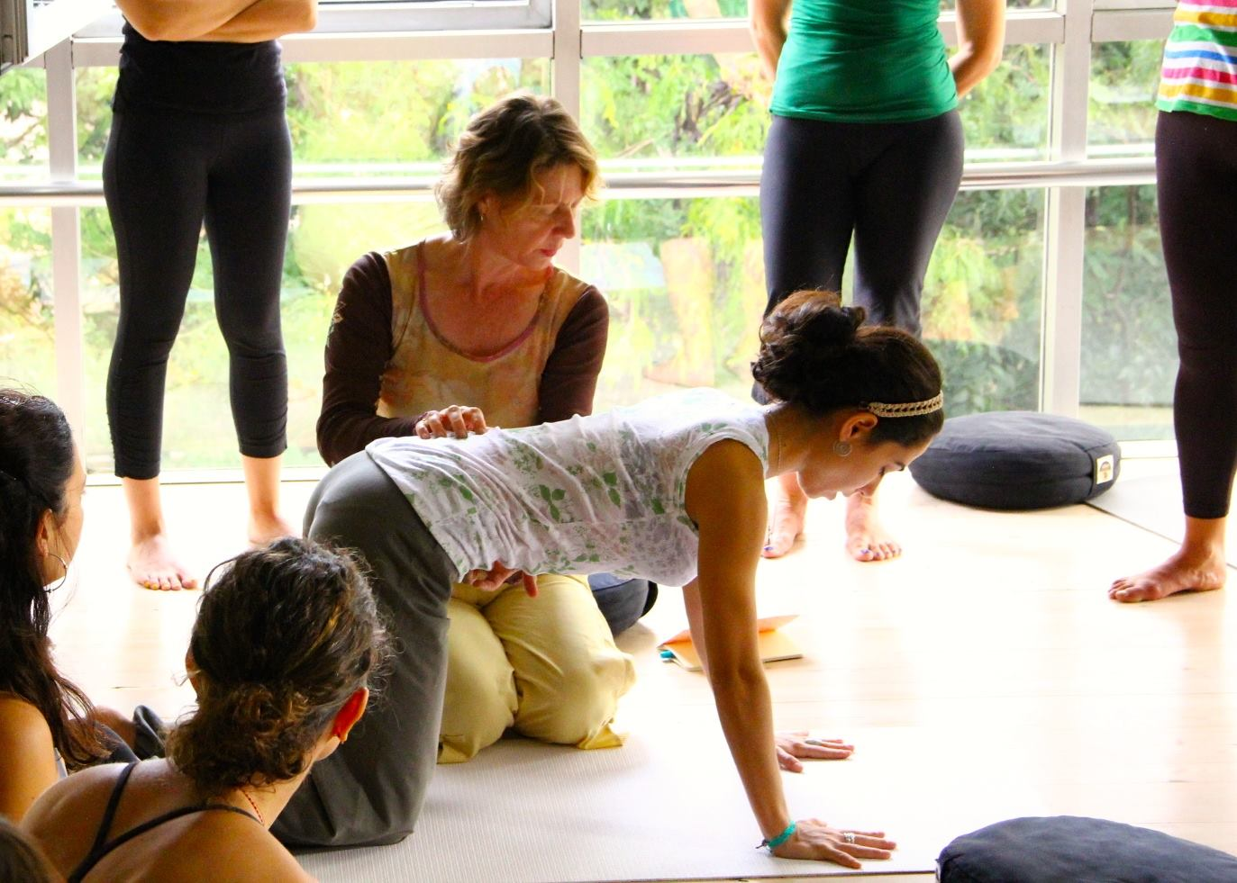 Viniyoga for Small Groups, Retreats