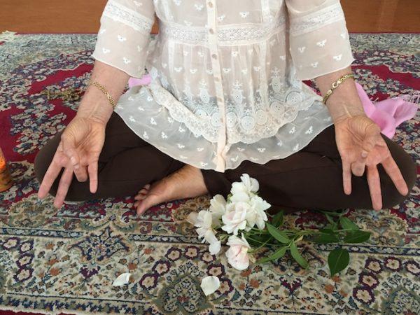Mirka Kraftsow - Viniyoga Yoga Sutra Study Online